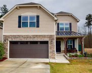 423 Cottonseed Way, Durham image