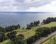 29-3818 HAWAII BELT RD, HAKALAU image