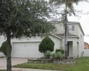 12122 Fox Bloom Avenue, Gibsonton image