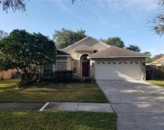 1413 Golden Squirrel Way, Seffner image