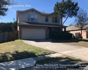 14303 Sonora Bend, Helotes image