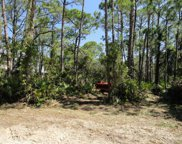 924 W Pine Ave, St. George Island image