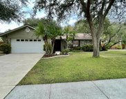 14910 Pelican Point Place, Tampa image