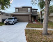 8024 Carriage Pointe Drive, Gibsonton image