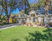 4643 Dunnie Drive, Tampa image