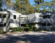 88 Salt Marsh Circle, Pawleys Island image