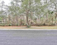 Lot 51 Lantana Circle, Georgetown image