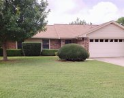 3019 Panhandle Drive, Grapevine image