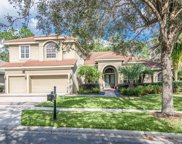 17207 Broadoak Drive, Tampa image