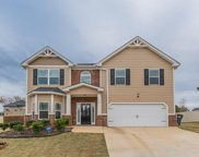 445 Denali Lane, Mcdonough image