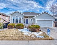 10646 Cottoneaster Way, Parker image