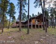 673 Beaver Creek Road, Alpine image
