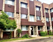 8639 West Foster Avenue Unit 2N, Chicago image