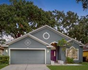 4639 Dunnie Drive, Tampa image