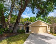 4707 Dunnie Drive, Tampa image