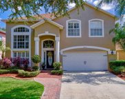8619 Foxtail Court, Tampa image