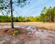 1763 Sawmill Rd, Apalachicola image