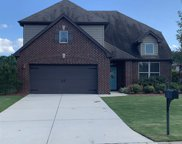 357 Blackberry Blvd, Springville image