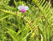 11-2759 LEHUA ST, MOUNTAIN VIEW image