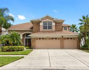 14101 Lincolnshire Court, Tampa image
