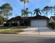 9721 Pleasant Run Way, Tampa image