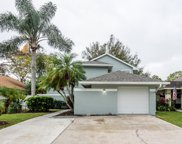 6024 Lemon Tree Court, Tampa image