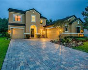 3302 Majestic View Drive, Lutz image