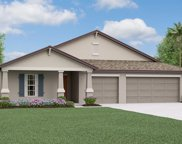 10808 Sage Canyon Drive, Riverview image