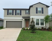 5419 Rainwood Meadows Drive, Apollo Beach image