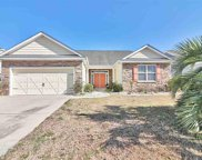 436 River Pine Dr., Conway image