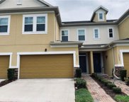 17441 Chateau Pine Way, Clermont image