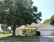 12801 Brown Bark Trail, Clermont image