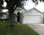 10537 Cherry Oak Circle, Orlando image