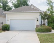 17491  Hawks View Drive, Indian Land image