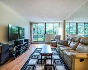 620 Seventh Avenue Unit 205, New Westminster image