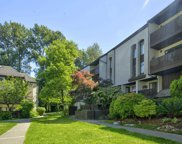 385 Ginger Drive Unit 314, New Westminster image