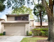 511 Goodridge Lane, Fern Park image