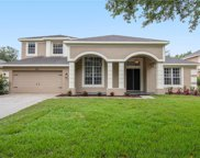 8305 Summer Grove Road, Tampa image