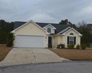247 Hickory Springs Ct., Conway image