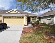 31849 Turkeyhill Drive, Wesley Chapel image