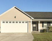 137 Christy Drive, Beulaville image
