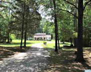 1728 Mcmullen Road, Gurley image