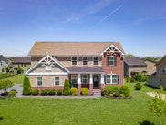 5003 Paddy Trce, Spring Hill image
