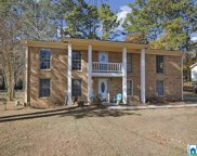 5436 Old Springville Rd, Pinson image