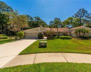 3557 Tanglewood Trail, Palm Harbor image