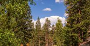 000 Harvest Moon Trail, Idaho Springs image