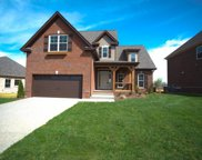 6036 Spade Drive Lot 256, Spring Hill image