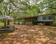 12121 Fred Drive, Riverview image