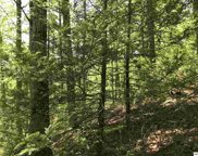 Lot 21-A Stepping Stone Dr., Sevierville image