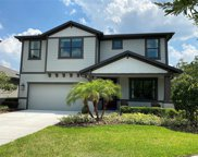 11205 Paddock Manor Avenue, Riverview image